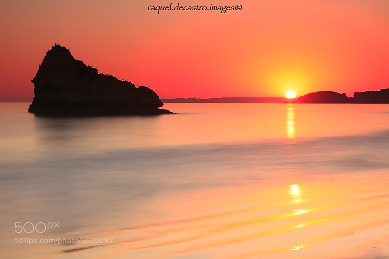 Photograph Mystic sunset by Raquel de Castro on 500px