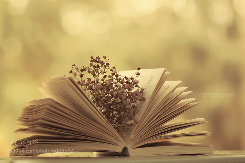 Photograph Vintage book ... by Essa Al Mazrooei on 500px