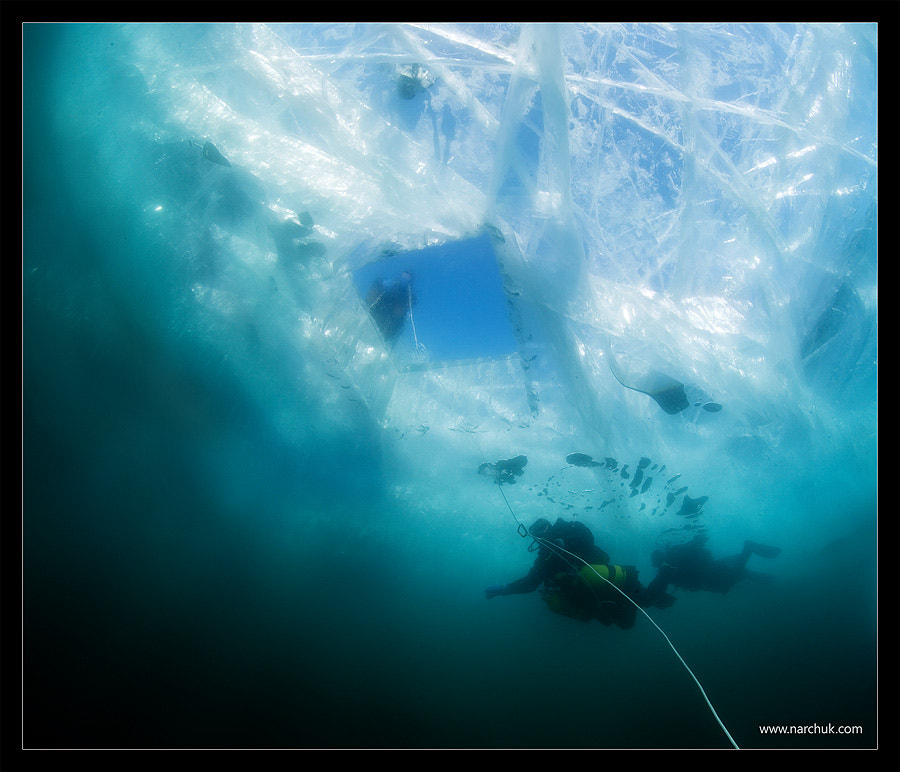 Photograph Ice diving by Andrey Narchuk on 500px