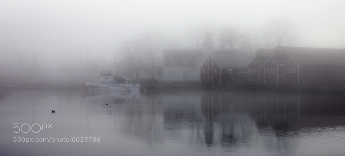 Photograph Fog city by Kjetil Bentsen on 500px