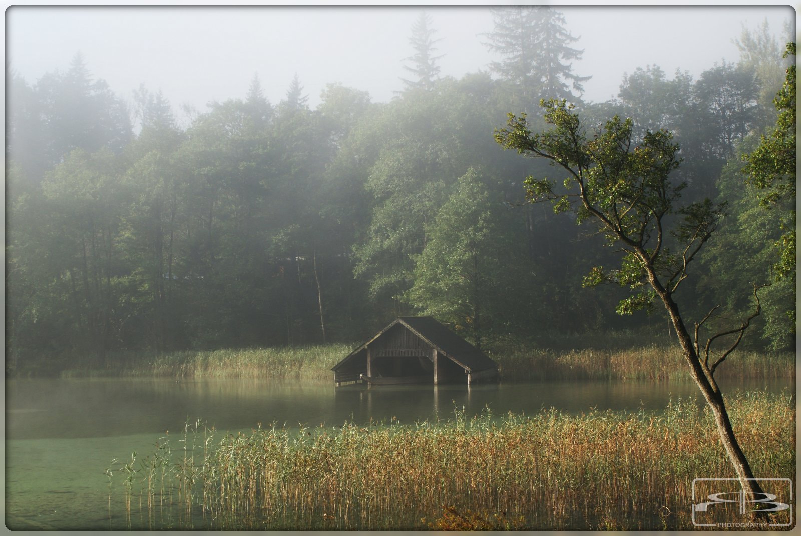 Photograph Foggy Morning by Rene BERNHARD on 500px