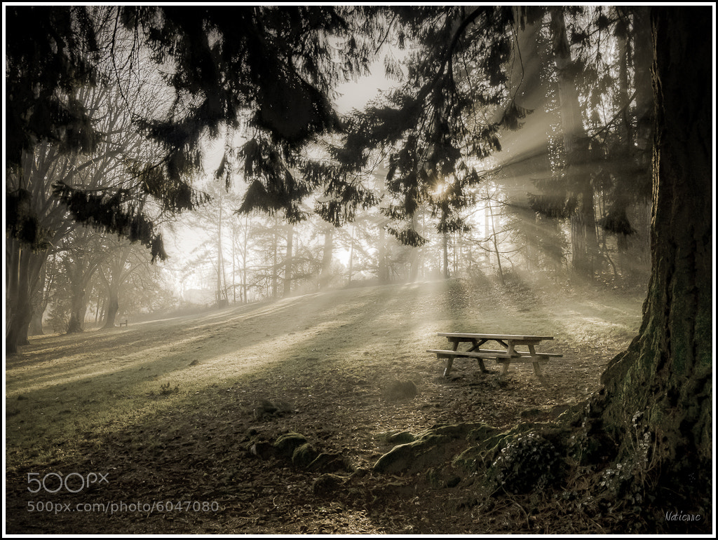 Photograph Rayons by Etienne Morel on 500px