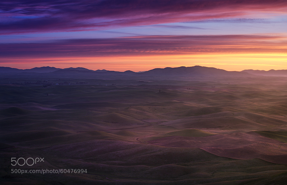 Photograph Palouse Sunrise by Jesse Summers on 500px
