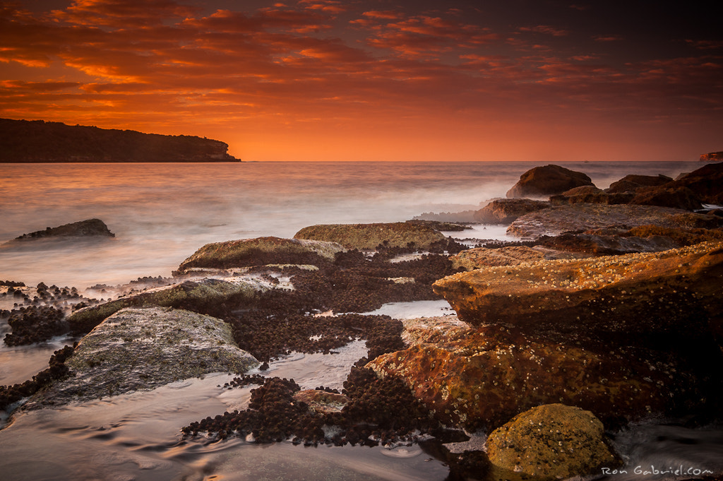 Photograph La Perouse by Ron Gabriel on 500px