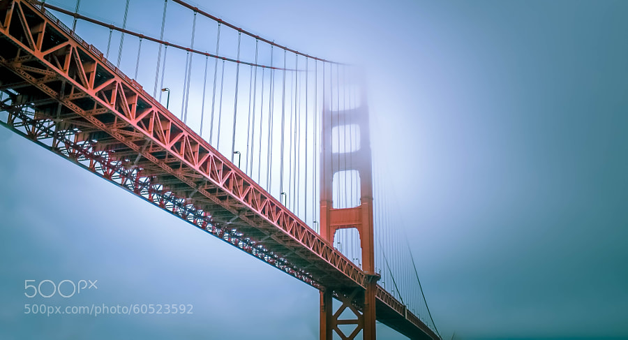 Photograph Foggy Morning in San Francisco by Declan Keane on 500px