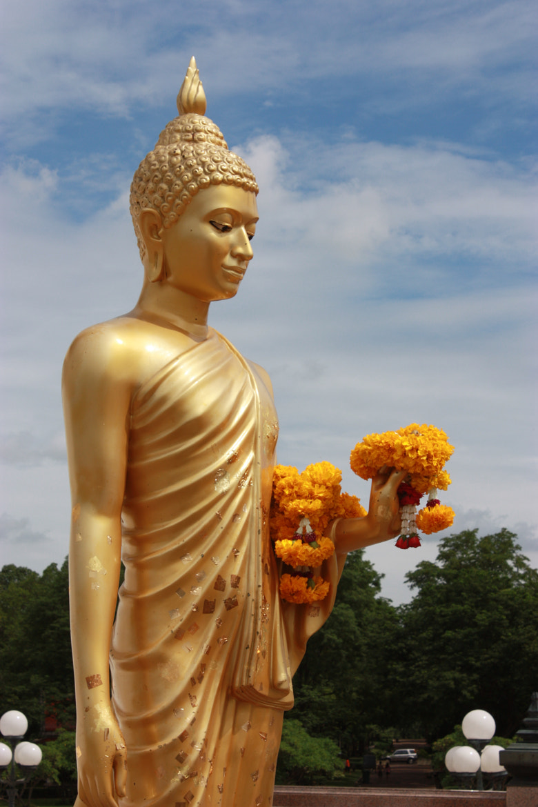 Photograph Buddha statue by Matthew Richards on 500px