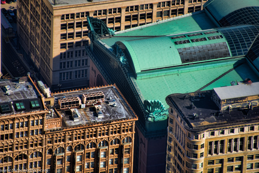 Chicago Library by Donato Scarano on 500px.com