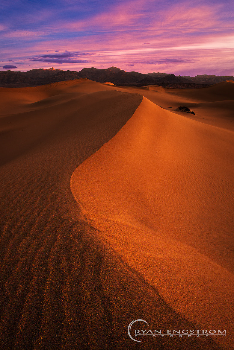 Photograph Death Curve by Ryan Engstrom on 500px