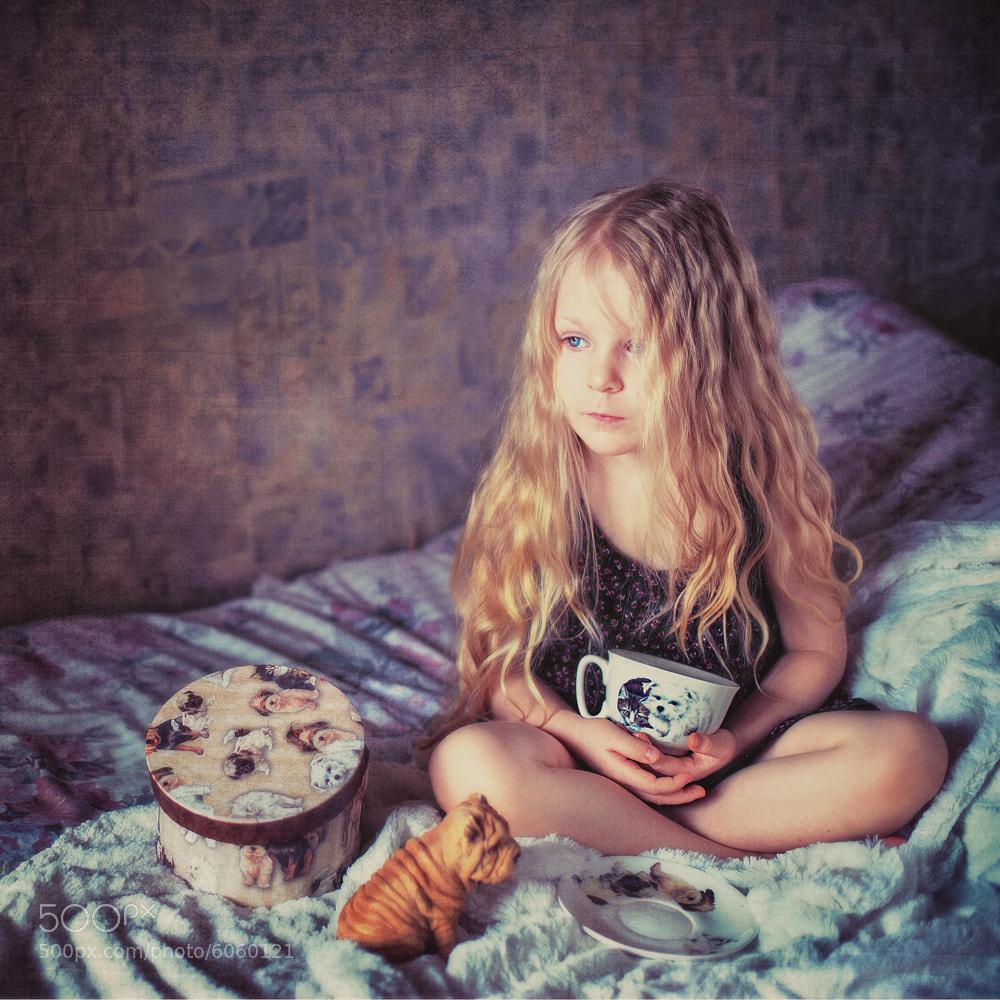 Photograph Dream about dogs... by Tatyana Kovaleva on 500px