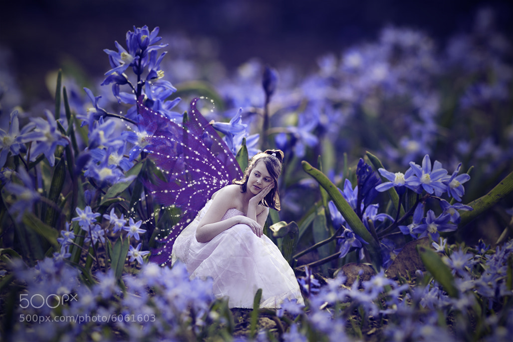 Photograph Bluebelle faerie by Anna 'Arrowlili' Irving on 500px