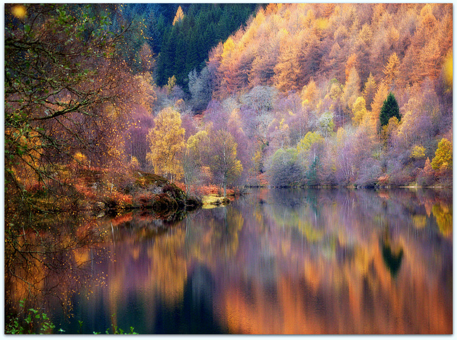Photograph Autumn at Loch Tummel by eric niven on 500px