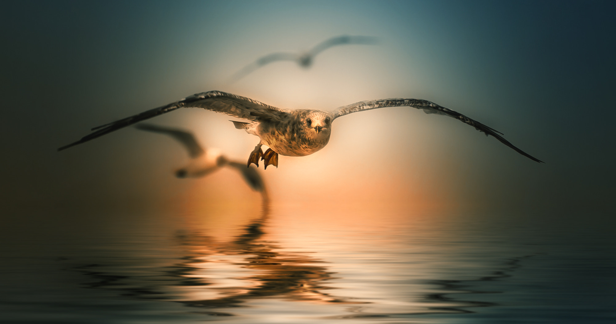 Photograph sailing by Detlef Knapp on 500px
