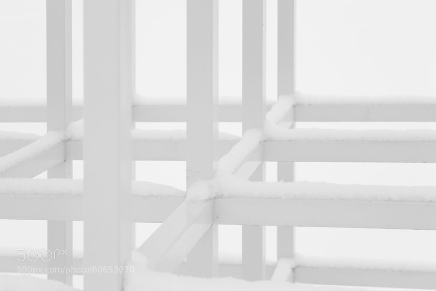 White on White by Jeff Carter on 500px.com