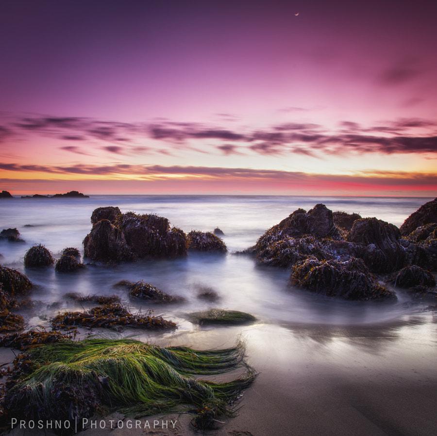 Sunset at Pescadero