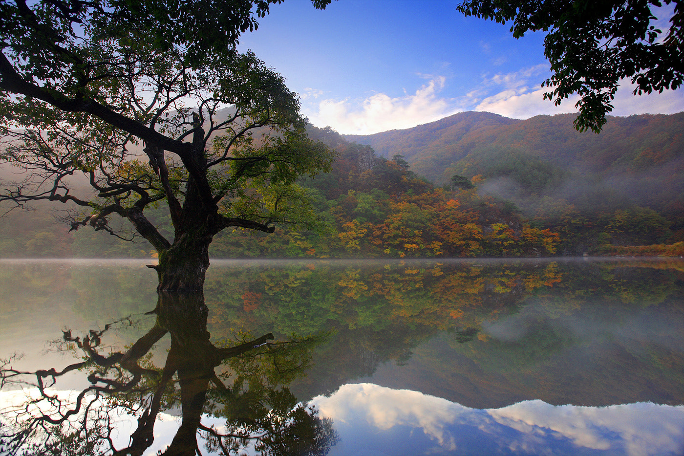Photograph calm reflection  by Sun Byoung Park on 500px
