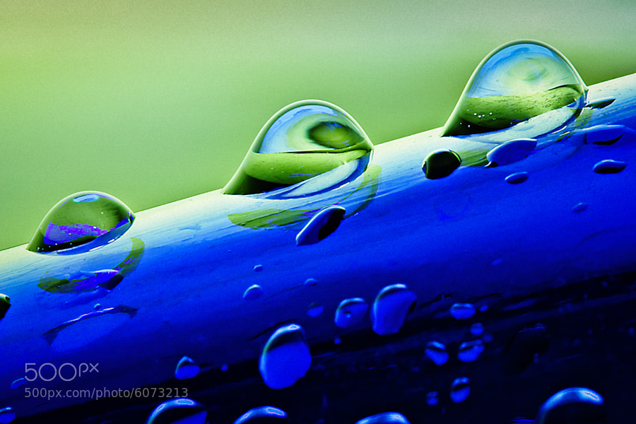 Photograph Water Drops on Glass Bottle Composition 2 by Mark Goff on 500px