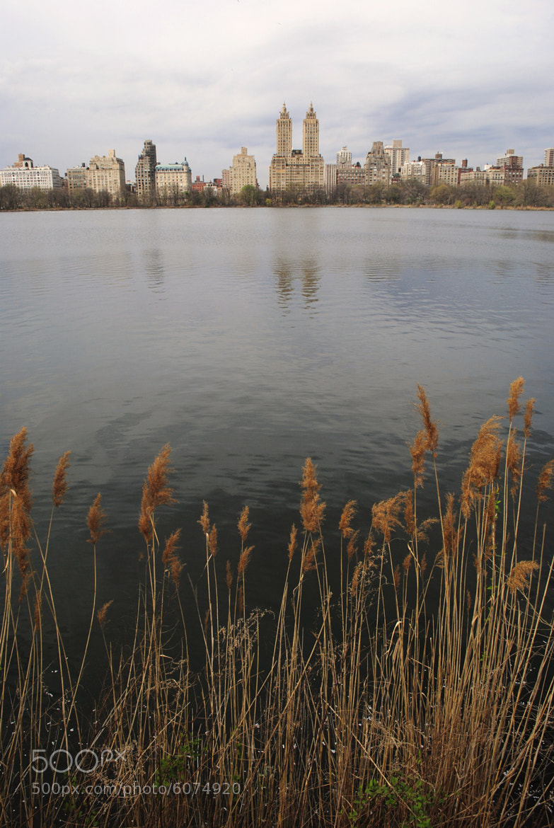 Photograph Central Park Reservoir by Paul Quinones on 500px