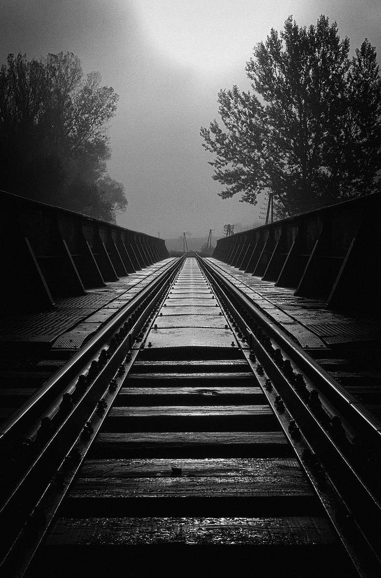Photograph Train bridge II by Martin Smolak on 500px