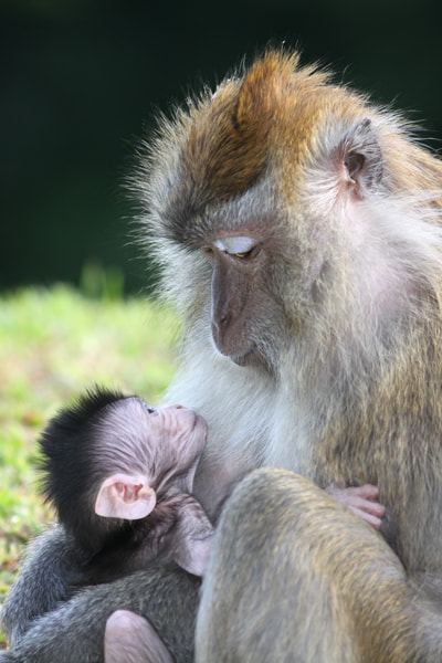 Photograph Mother & son by Vittorio D'Apice on 500px