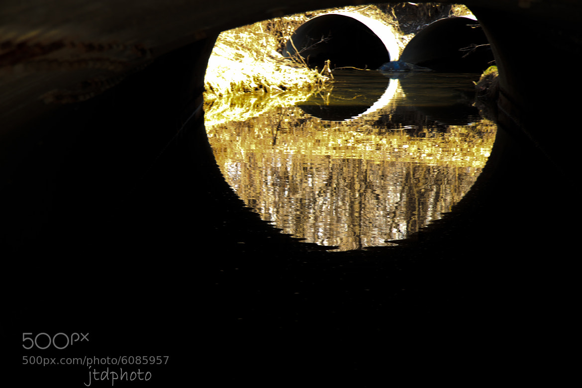 Photograph Reflections in a Creek by Joe Davis on 500px