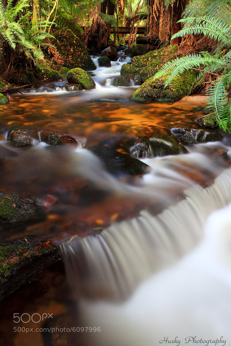 "Photograph ""Forester Cascades"" by Dale Mawby (Husky Photography) on 500px"