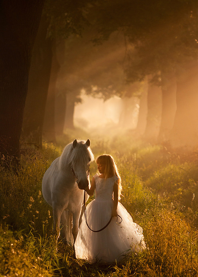 fairytale by Cecylia ??szczak on 500px.com