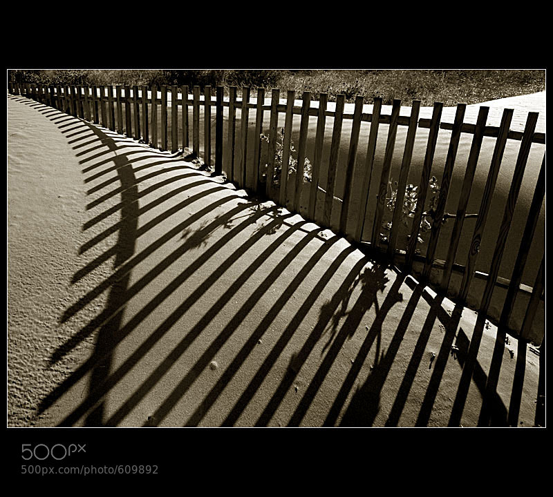 Photograph ... Another fence ... by Pedro Liborio on 500px