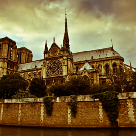 old fashioned view of the Notre Dame by Maxim Solodov (acidium)) on 500px.com