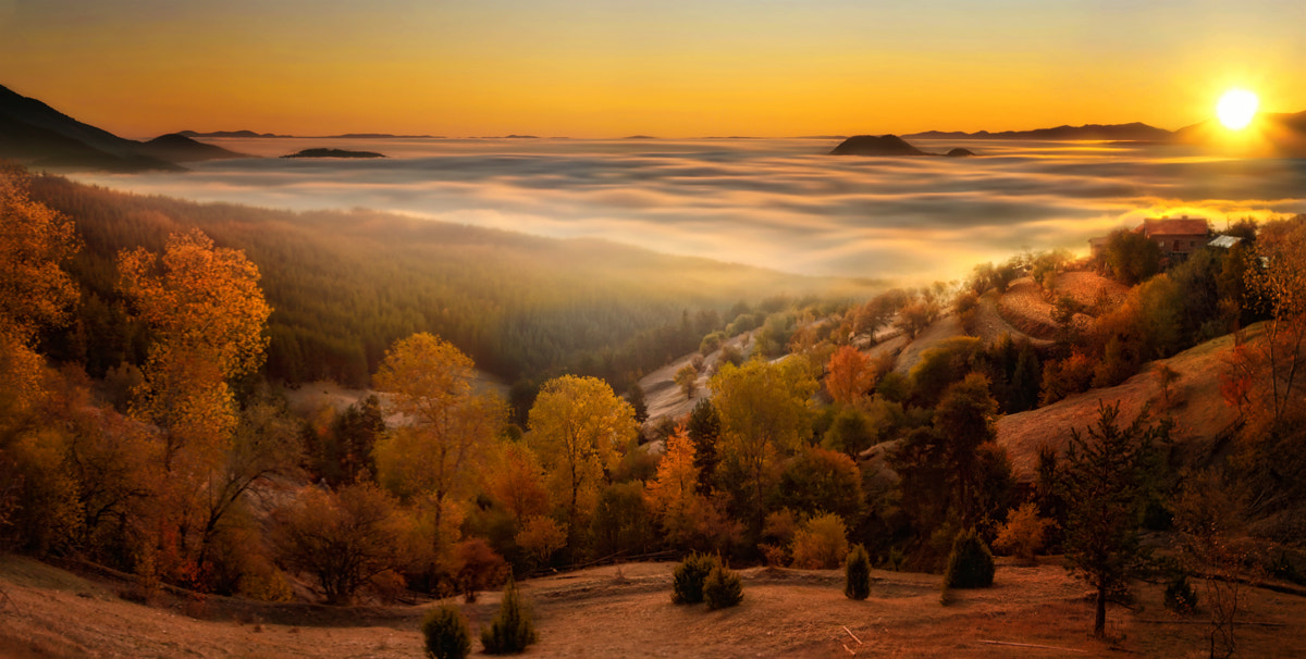 Photograph Morning at West Rhodope by Albena Markova on 500px