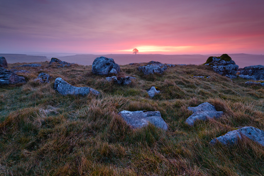 Photograph Dawn Hues of the Dales by Paul Sutton on 500px
