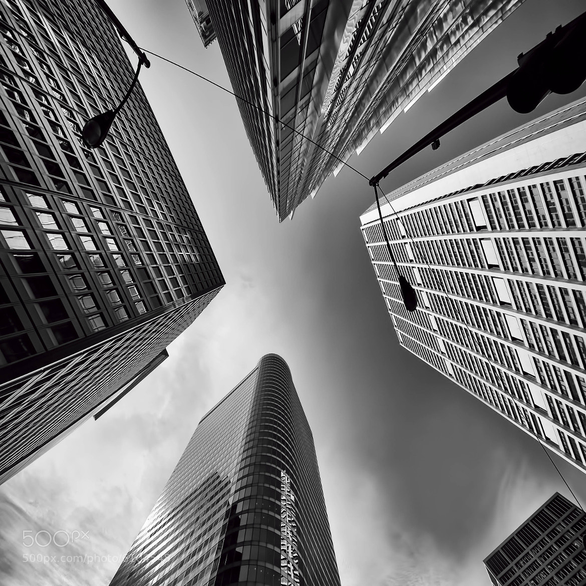 Photograph Looking Up by Elena Kovalevich on 500px