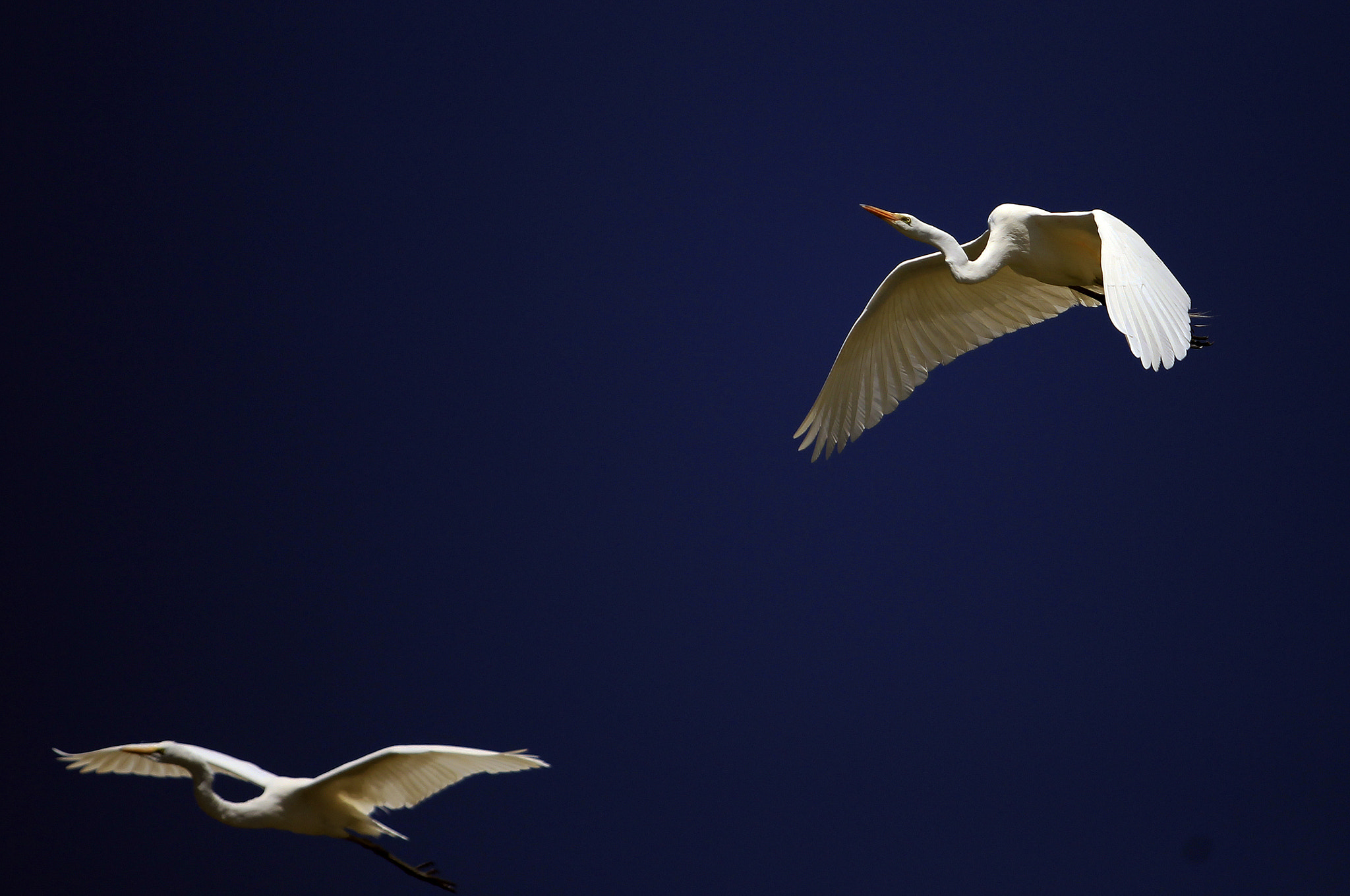 Photograph couple of friends flying by Cristobal Garciaferro Rubio on 500px