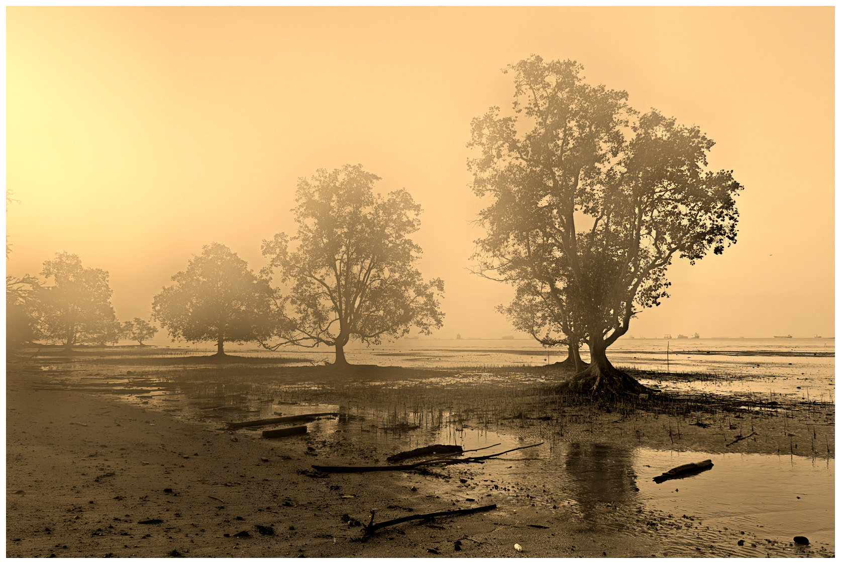 Photograph Misty misterious by Christine Loo Loo on 500px
