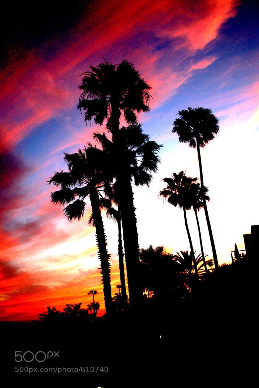 Photograph Sunset @ Laguna by Deborah Walker on 500px