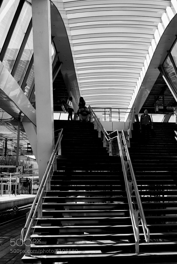 Central trainstation in Arnhem, highstructure, used Silver Efex Pro.