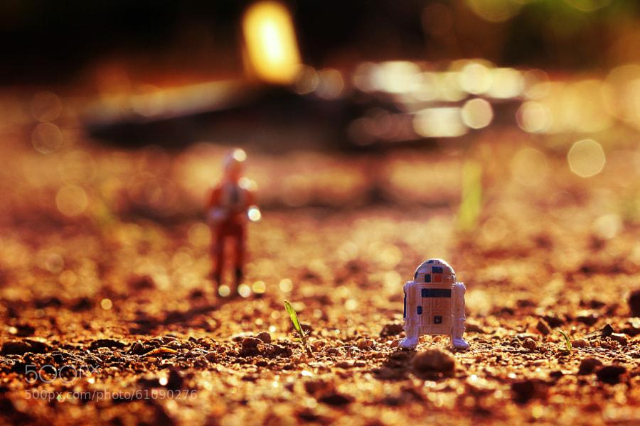 Photograph R2 wait! by Zahir Batin on 500px