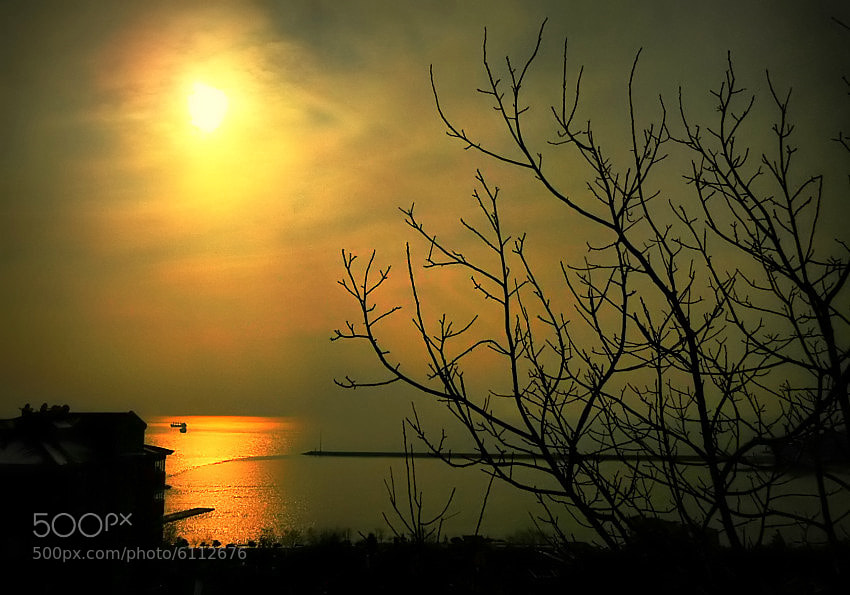 Photograph sunset by tkojt  on 500px