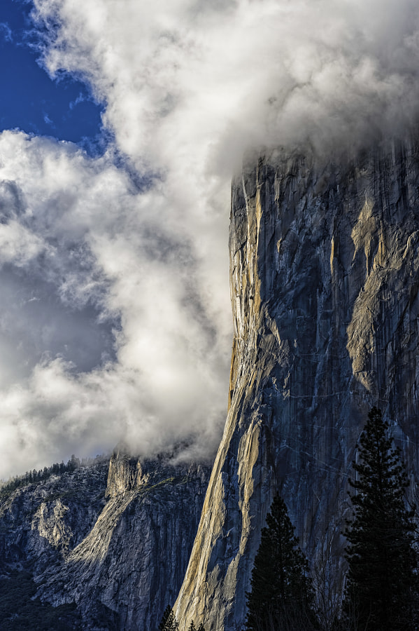 Photograph El Capitan by Brent Clark on 500px