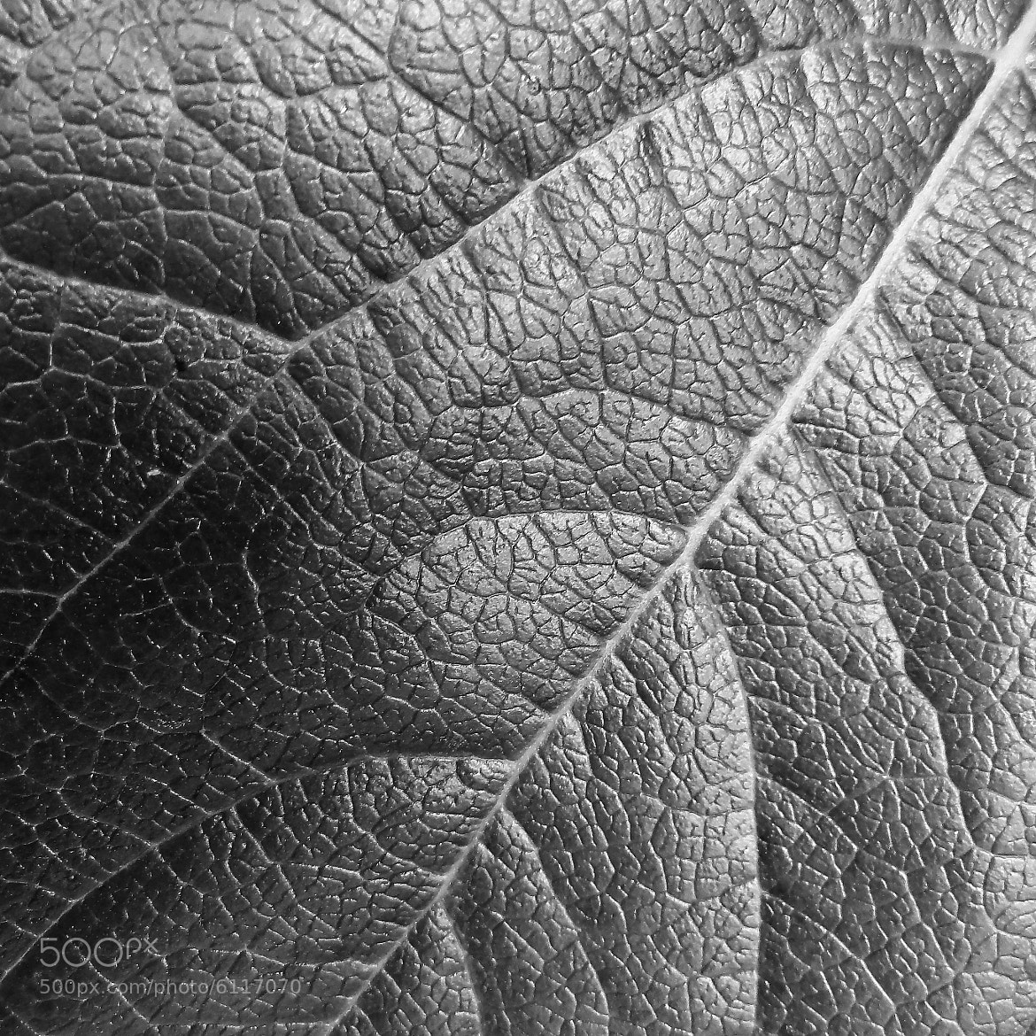 Photograph Textures. by Miguel Silva on 500px