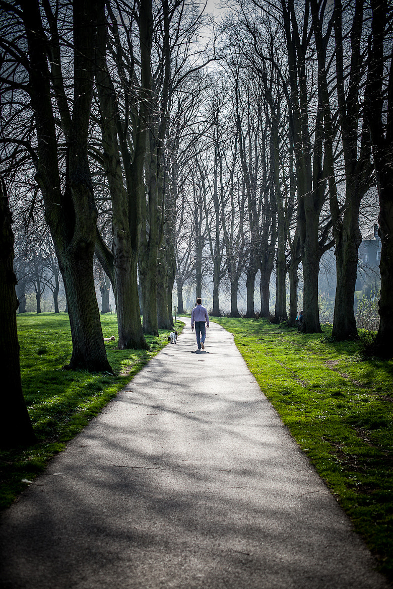Photograph A Walk In The Park by Alex Ward on 500px