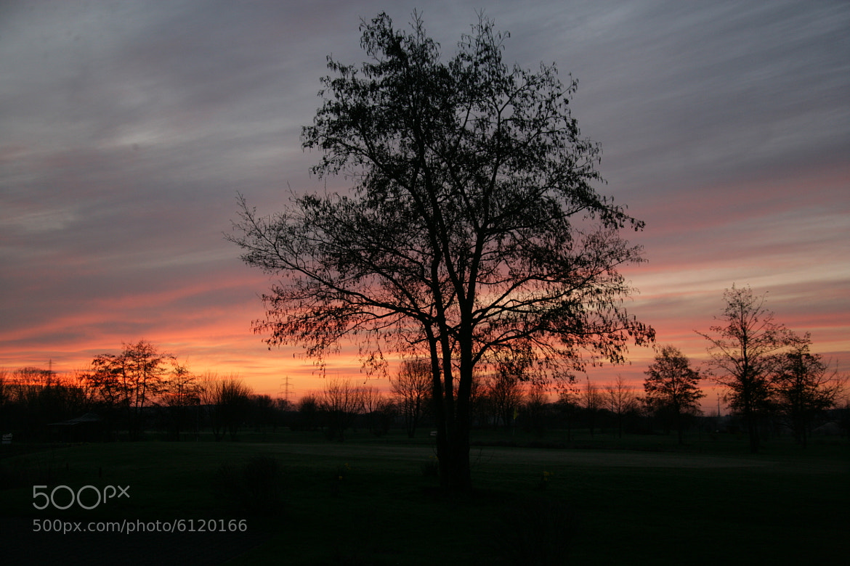 Photograph Dortelweil Sunrise No 2 by Scott Graham on 500px