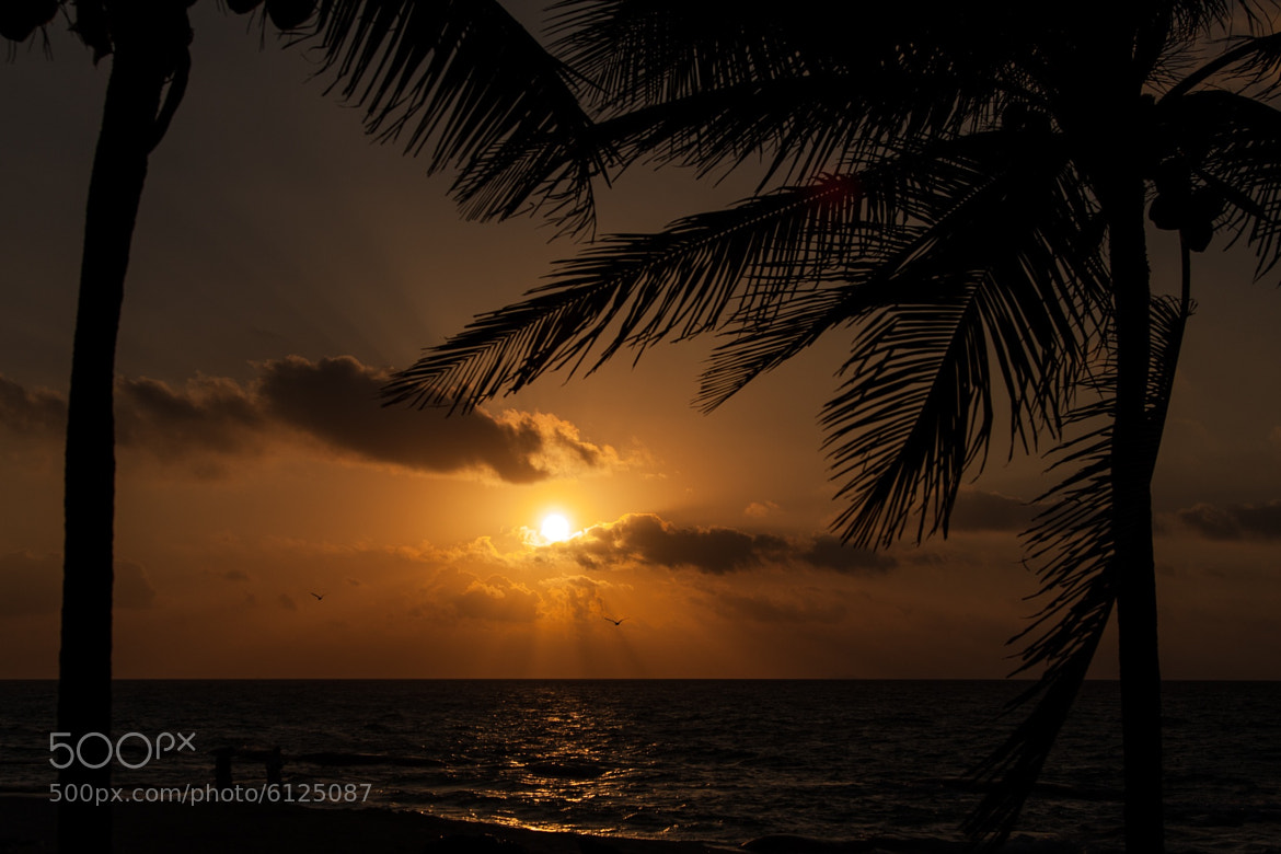 Photograph Camera Roll-150 by Marco Duizer on 500px