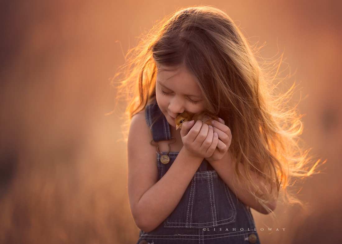 Photograph Golden Warmth by Lisa Holloway on 500px