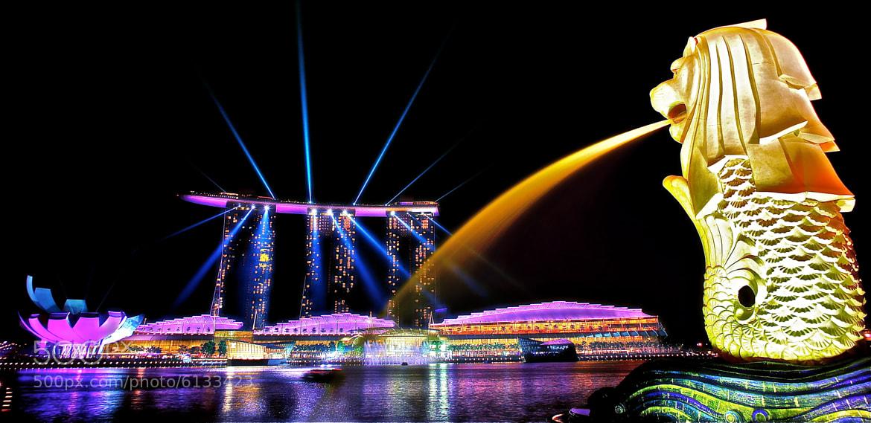 Photograph Merlion Park Laser Show by Sim  Kim Seong on 500px