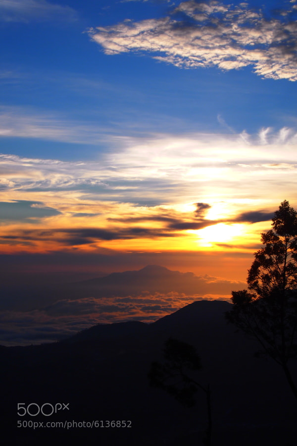 Photograph The new day has come by Prabu dennaga on 500px