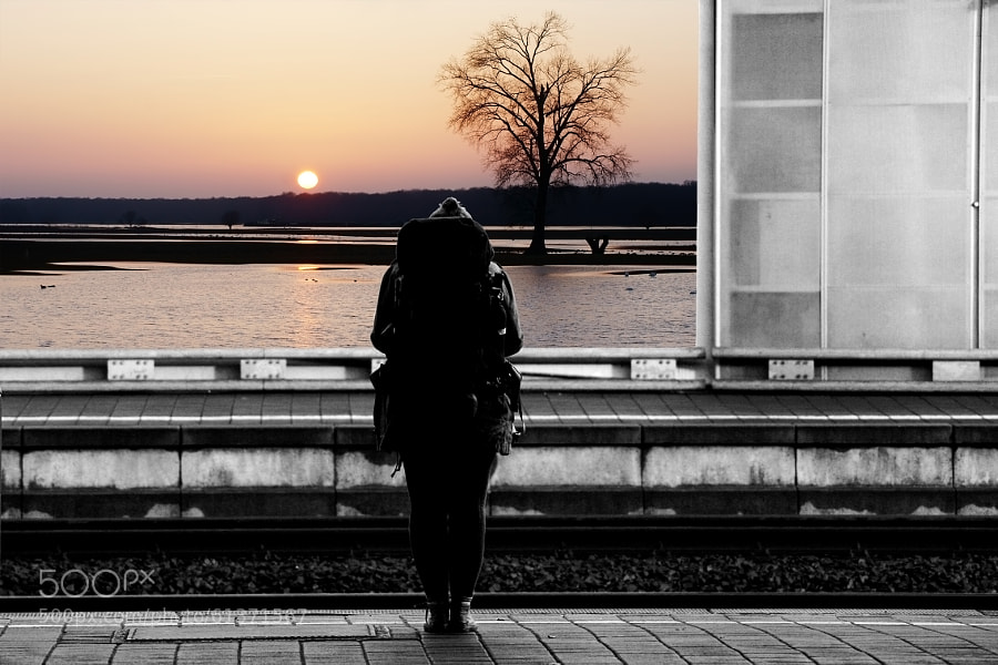 Photograph Dreaming by Bastian Kienitz on 500px