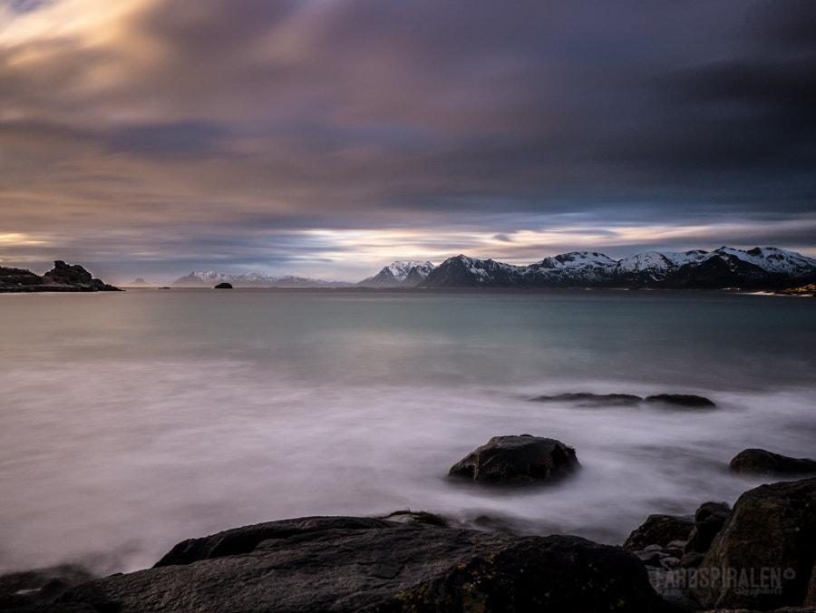 A little bit of freedom - Lofoten, Norway