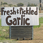 A hand painted sign on the side of the road in Gilroy, California.  Gilroy is well known for its garlic crop and for the annual Gilroy Garlic Festival, featuring various garlicky foods, including garlic ice cream.