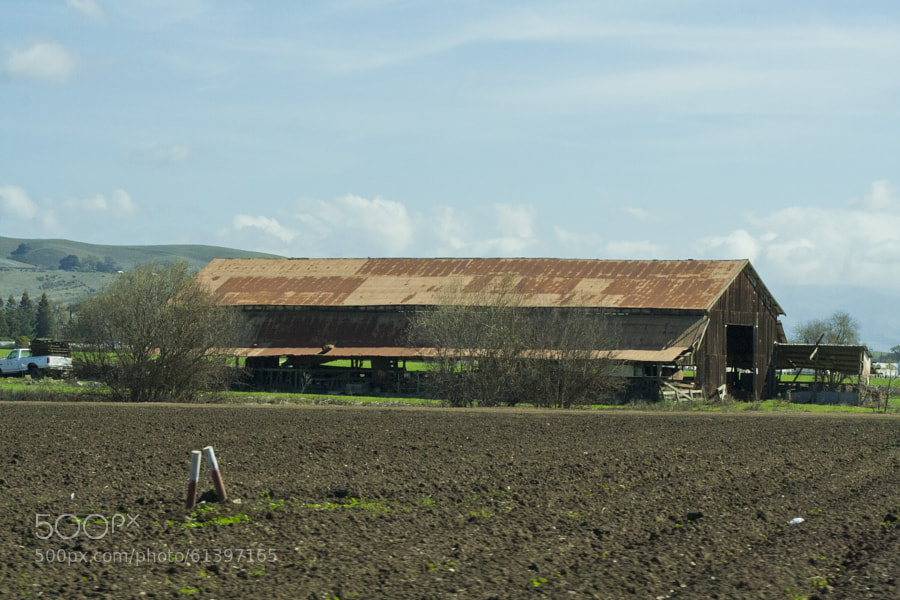 One if the old farms that is sill standing in Gilroy, California.