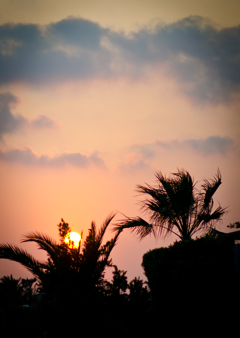 Photograph Sun Set Colors by Walid EL Herpha on 500px